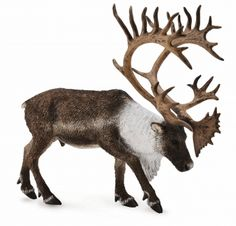 Woodland Caribou - Collecta Figures: Animal Toys, Dinosaurs, Farm, Wild, Sea, Insect, Horses, Prehistoric, Woodlands, Dogs, Cats, Animal Replica