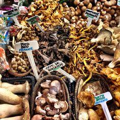 Les champignons au marché Atwater