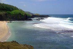 Gris Gris  Flamboyant tours Adulte / Adult :14 Euros . Enfants / Kids : 10 Euros  #ilemaurice #Mauritius #tour #excursions