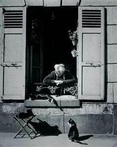 Concierge with Cats Paris cat photography by Brassai - aka Gyula Halasz Andre Kertesz, Vintage Paris, Vintage Cat, Vintage Photography, Street Photography, Cat Photography, Window Photography, Fashion Photography, Chat Paris