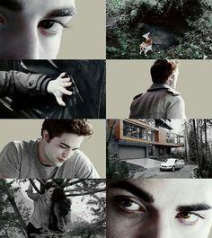 'the twilight saga' characters Twilight Poster, Twilight Quotes, Twilight Saga Series, Twilight New Moon, Twilight Pictures, Twilight Series, Twilight Movie, Edward E Bella, Twilight Bella And Edward