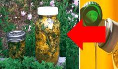 Každú jar dávala moja teta kvety púpavy do pohára s olejom: Nikdy by som neverila, že raz tento skvelý nápad vyvážime zlatom aj v mojej rodine! Rodin, Popcorn Maker, Ale, Kitchen Appliances, Homemade, Health, Funguje To, Gardening, Medicine