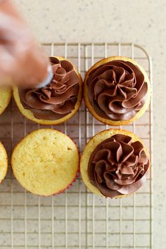 Cupcake Basics: Chocolate Sour Cream Frosting from Annie's Eats Sour Cream Chocolate Frosting, Chocolate Frosting Recipes, Chocolate Icing, Best Chocolate, Dessert Chocolate, Delicious Chocolate, Homemade Chocolate, Beaux Desserts, Just Desserts