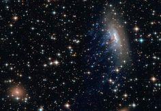Vitesse stellaire La galaxie spirale ESO 137-001, que l'on aperçoit en haut à droite du cliché, se trouve dans l'amas de galaxies de la Règle, à 200 millions d'années-lumière de nous. Cette galaxie fonce à travers l'espace à une allure de sept millions de kilomètres par heure. Une vitesse si élevée que la pression dynamique exercée éjecte de grandes quantités de gaz, visibles en bleu dans le sillon de la galaxie.