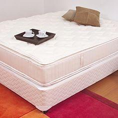 Personal organizer ensina a eliminar bolor dos armários, quartos, cozinha, roupas, carpetes e mais