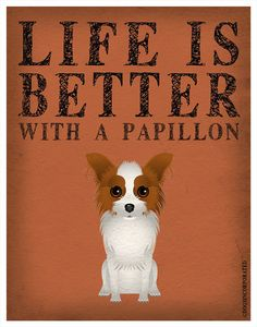 Life is Better with a Papillon