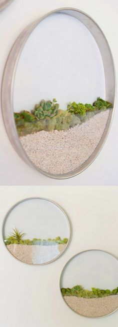 Circular Framed Planters Add Living Art to Your Walls Wall art. Circular Framed Planters Add Living Art to Your Walls Home Decor Accessories, Decorative Accessories, Clothing Accessories, Deco Nature, Nature Nature, Deco Originale, Indoor Plants, Air Plants, Indoor Herbs