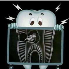 At Gill Dental, Practicing highest standards of modern dentistry e. dental implants and surgery to all residents of dentists & dental Wellington CBD. Dental Hygiene School, Dental Life, Dental Art, Dental Assistant, Dental Hygienist, Dental Surgery, Dental Implants, The Nanny, Dental Jokes