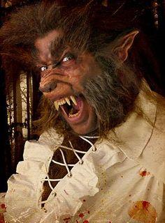 http://www.maskworld.com/german/department/halloween/make-up-spezialeffekte--D-240/maskenteile--D-2403/werwolfohren--10052