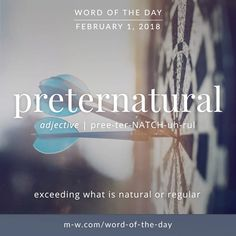 "535 Likes, 5 Comments - Merriam-Webster (@merriamwebster) on Instagram: ""The #wordoftheday is 'preternatural' . #language #merriamwebster #dictionary"""
