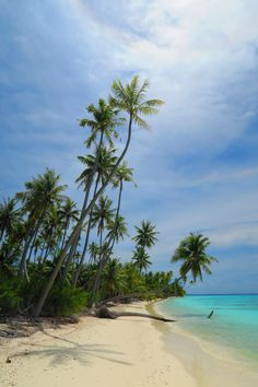 PK9 Beach in Fakarava - so perfect and there's nobody here!