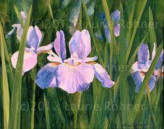 Original Watercolor Painting Detailed WILD IRIS by BetweenTheWeeds, $250.00