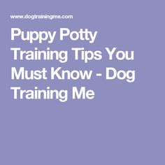 Puppy Potty Training Tips You Must Know - Dog Training Me
