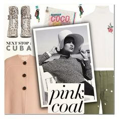 """Hey, Girl: Pretty Pink Coats"" by vampirella24 ❤ liked on Polyvore featuring Chanel, Roksanda, STELLA McCARTNEY, Gucci and Alasdair"