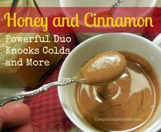 Honey and Cinnamon ~Powerful Duo Knocks Colds and More | Deep Roots at Home