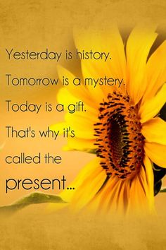 Yesterday is history. Tomorrow is a mystery. Today is a gift. That's why it's called the PRESENT!