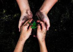 25 frases e imágenes inspiradoras a favor del Día de la Tierra