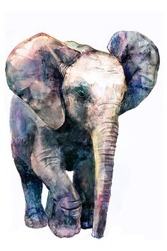 Little elephant Watercolor, African animals, Series - Wildlife. Little elephant Watercolor by 22.07.2016  Print can be signed by me …