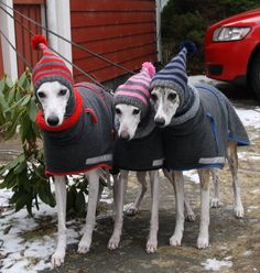 Omg, would love these hats for my three!
