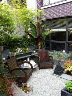 pequeñas diseño de jardines árboles de bambú muebles de patio al aire libre
