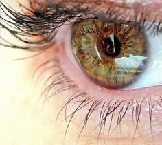 Less than 5% of the popualtion have Hazel Eyes