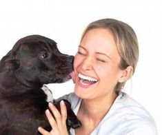 How to Care for Your Dog : Dog Care Tips for Pets - #PedigreeJointCare Plus