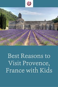 Top Family-Friendly Sights and Activities in Provence, France