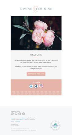 Promotional email template designed for yoga and wellness welcome email template designed for yoga and wellness entrepreneurs stopboris Image collections