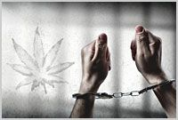 Sentencing Commission: Nearly One In Ten Defendants Sentenced To Federal Prison In 2015 Violated Marijuana Laws  This is why we need Marijuana reclassified out of Schedule One drugs. Plus just legalize it. Prison is no place for a marijuana user.
