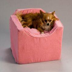 @Petco Pet Supplies - Pet Products - Pet Food | Petco.com