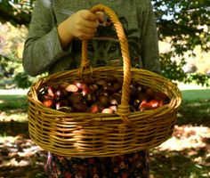 Chestnut picking.... Finding Joy, Wicker Baskets, Home Decor, Decoration Home, Room Decor, Home Interior Design, Home Decoration, Woven Baskets, Interior Design