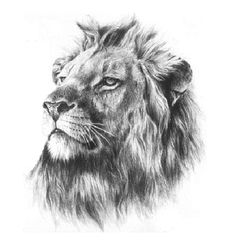good leo tattoo for men