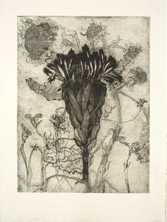 "Katie DeGroot(American) Protea from the series ""A Tribute to Dead Flowers"" 2014 intaglio x viaB-sides Gravure Illustration, Art Et Illustration, Botanical Illustration, Botanical Drawings, Botanical Art, Art Floral, Intaglio Printmaking, Collagraph, Cyanotype"