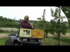 """""""How We Grow"""" Video - Sunrise Orchards, Gays Mills, Wisconsin (YouTube)"""