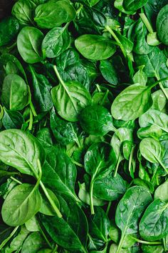 Top view on fresh organic spinach leaves. Healthy green food and vegan background. photo by Edalin on Envato Elements Spinach Leaves, Baby Spinach, Organic Vegetables, Fruits And Vegetables, Terra Verde, Photo Fruit, Vegetables Photography, Eat The Rainbow, Greens Recipe