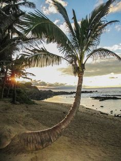 Maui, Kula, Maui, Hawaii — by My Wanderlusty Life. Sunset and #beach outside of one of Hawaii's best restaurants, Mama's Fish House in Maui. Gorgeous location! #GoldenHour