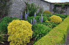 Fota Arboretum and Gardens | Ландшафтный дизайн садов и парков