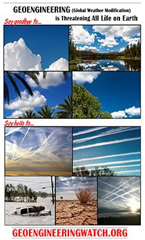 Chemtrails Raining Poison from the Sky » Chemtrails Raining Poison from the Sky | GeoengineeringWatch.org | This has got to STOP!!!