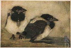 jan mankes: two young magpies (twee jonge eksters) Dutch Painters, Dutch Artists, Wildlife Art, Animal Paintings, Bird Art, Pet Portraits, Pet Birds, Painting & Drawing, Art History