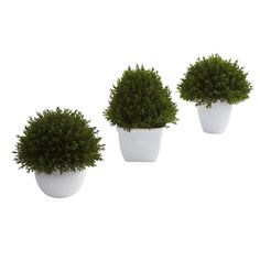 """Mixed Cedar Topiary Collection (Set of 3)  - Sometimes a subtle, accent decoration fits the bill. That's exactly what these mixed cedar topiaries provide. They are small (between 5.5 and 6.5"""") , delicate looking (with beautiful, almost """"fluffy"""" faux cedar) , and come in a lovely little planter. Plus this is a set of three, so you can display them in multiple places (or keep some for yourself and give the rest as a gift. ) Number of Trunks: NA Number of Flowers: NA Number of Leaves: NA Pot…"""