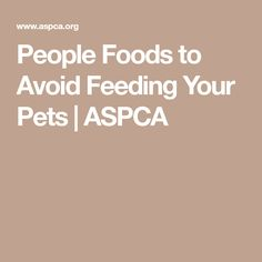 People Foods to Avoid Feeding Your Pets | ASPCA