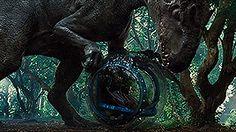 Indominus Rex:OOOH! A KINDER SUPRIZE! Humans:NNNNNOOOOO!