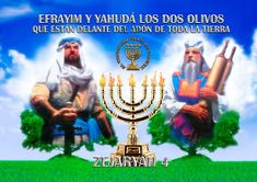"EL YISRAEL DE YAHWEH: EL OLIVO FRONDOSO EL MISTERIO DEVELADO A SHAUL ""PABLO"" Israel, Strong Faith, Torah, Instagram, Movie Posters, Html, Christianity, To Tell, Promised Land"
