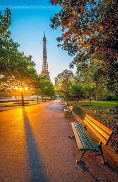 Manhã luminosa em Paris, França Morning Light in Paris, France