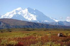 Mt. McKinley can be seen in Denali National Park, Alaska, on our 'land excursion' in Alaska.  There are very few days when the mtn can be fully seen & we were blessed to be there on that day.  The Inn was fabulously decorated w/huge fireplace & great food!