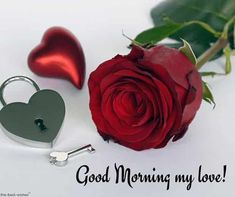 Romantic Good Morning Message For Husband [ Best Collection ] Good Morning Husband, Good Morning Love You, Romantic Good Morning Messages, Good Morning Picture, Good Morning Wishes, Positive Good Morning Messages, Morning Message For Him, Good Morning Text Messages, Good Morning Texts