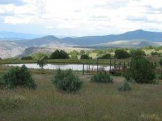 Mule Creek, New Mexico