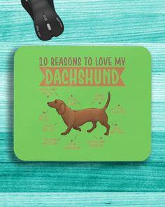 10 Reasons To Love Dachshund Best Dog - Kiwi mini corgi puppy, introduce puppy to dog, blonde dachshund #dachshund #dachshundofinstagram #dog, dried orange slices, yule decorations, scandinavian christmas Dachshund Quotes, Dachshund Gifts, Funny Dachshund, Mini Corgi, Wire Haired Dachshund, Funny Costumes, Funny Outfits, Yule Decorations, Orange Slices