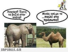 Funny Greek Quotes, Funny Quotes, Funny Cartoons, Funny Images, Comedy, Elephant, Lol, Humor, Queen