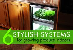 https://inhabitat.com/6-stylish-systems-to-keep-your-organic-vegetable-garden-growing-year-round/